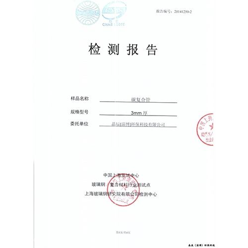 天津赌钱官网 (淄博)环保科技有限公司检验报告